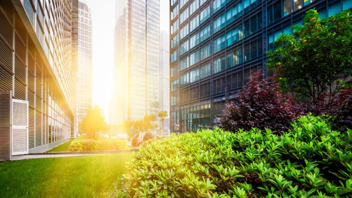 Strategies for Greening Your Building