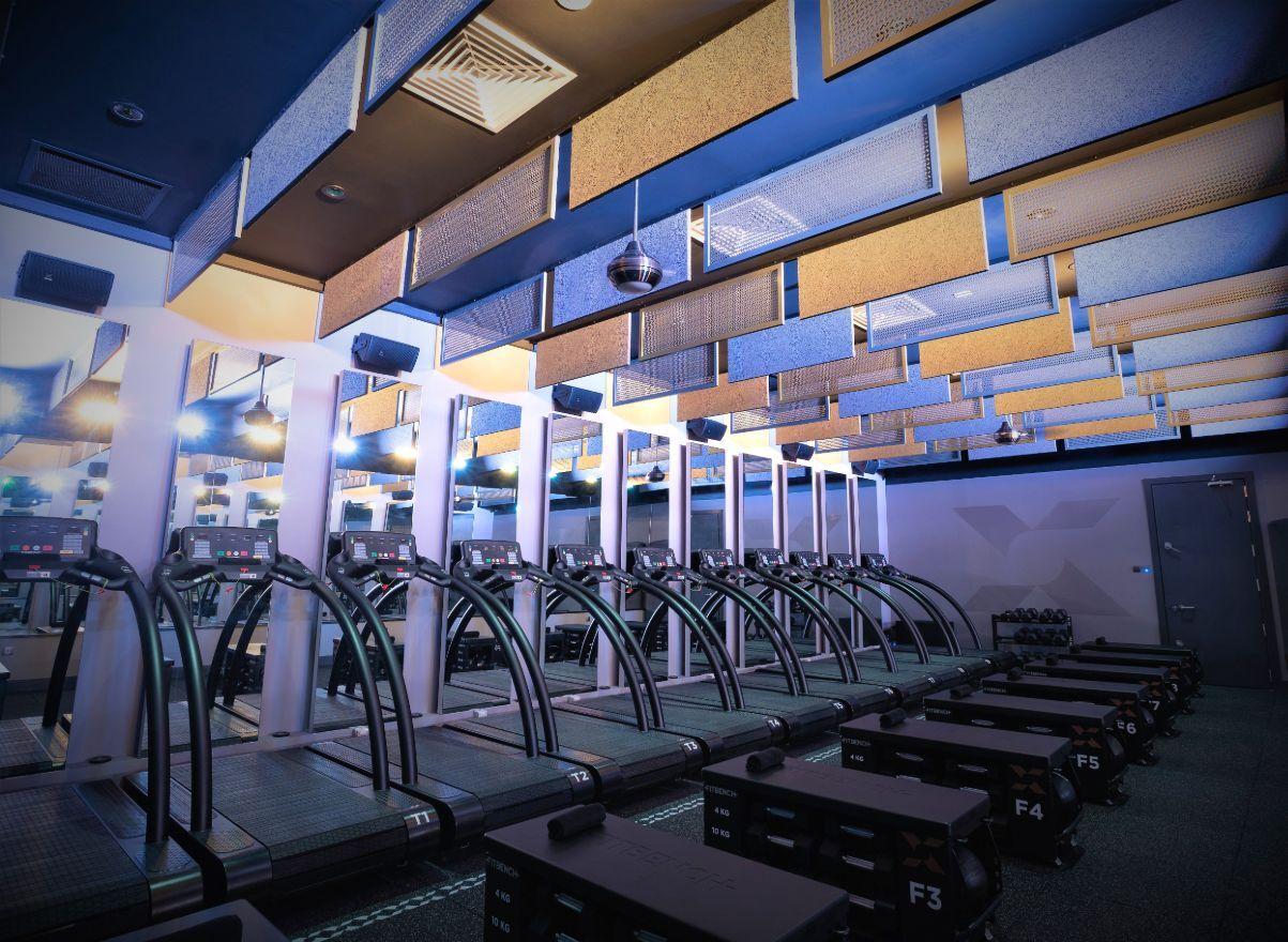 LN_Boutique_Fitness_Photo_Treadmills (1).jpg